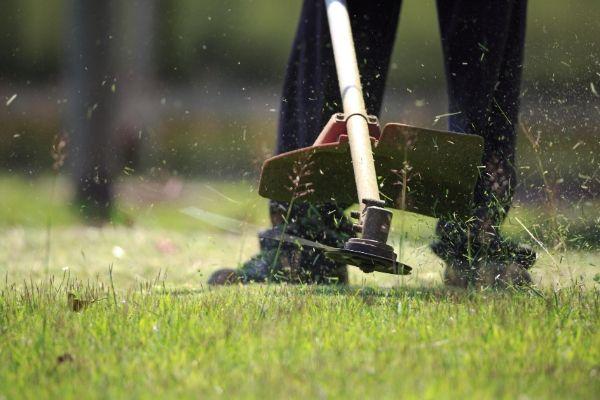 landscaper-working-in-lawn