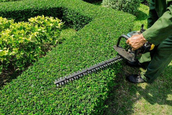 landscaper-trimming-bushes